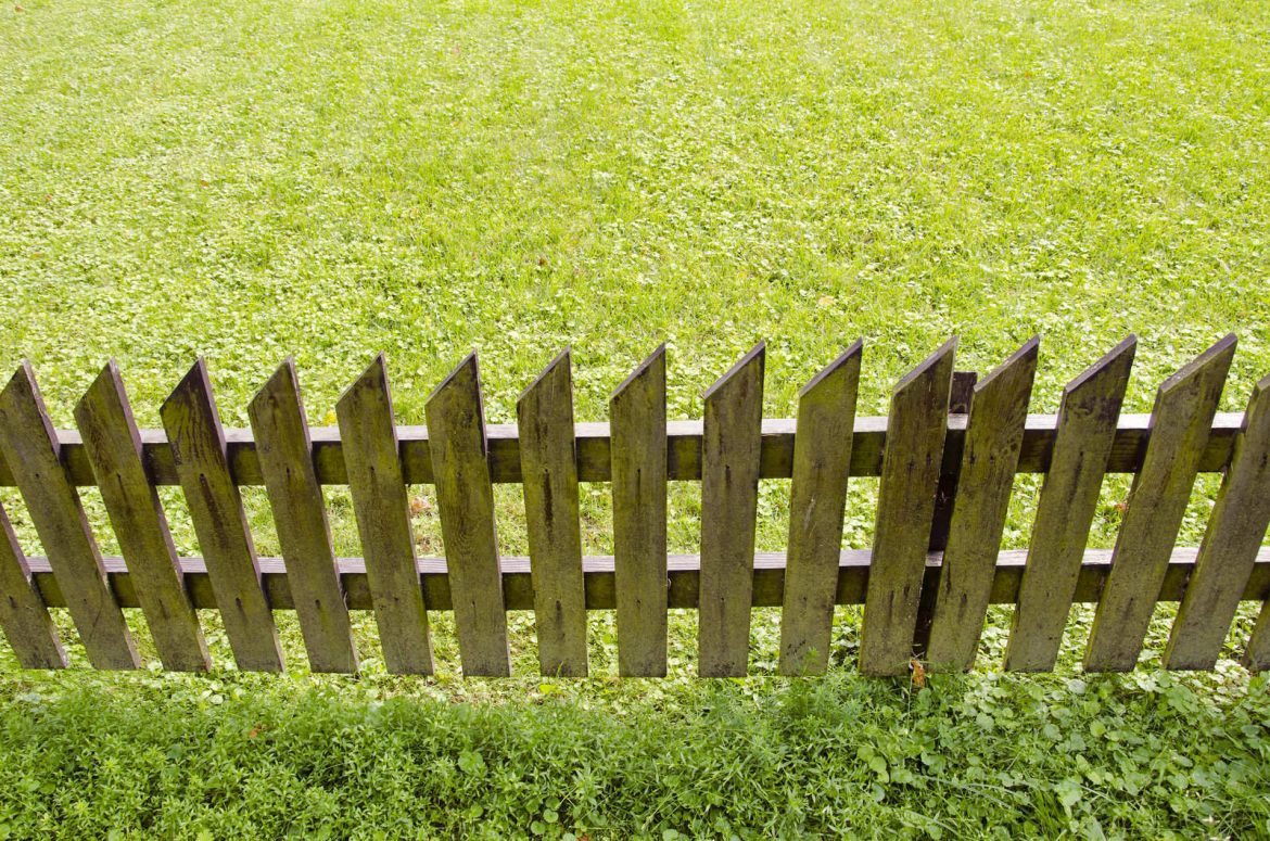 Selecting The Best Materials For Your Garden Fence